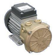 6.7 CFM 0.7 HP Liquid Ring Vacuum Pump 230 Single Phase | 3AVI 8