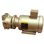 1.5 HP Single-Stage Motor-Mounted Liquid Ring Vacuum Pump DEKKER DV0020DB