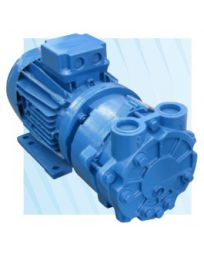 33 CFM 3 HP Liquid Ring Vacuum Pump 230V 1 Phase | 3AV55