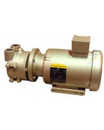 35 ACFM, 3 HP Single-Stage Motor-Mounted Liquid Ring Vacuum Pump DEKKER DV0035D-MA3-SGL