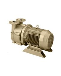 10 HP Single-Stage Motor-Mounted Liquid Ring Vacuum Pump DEKKER DV0150D